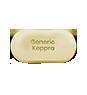 Generic Keppra